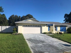 Photo of 116 N Bay Hills Boulevard, SAFETY HARBOR, FL 34695 (MLS # T3273026)