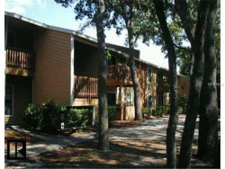 Photo of 2480 Cypress Pond Road, Unit 912, PALM HARBOR, FL 34683 (MLS # U8001795)