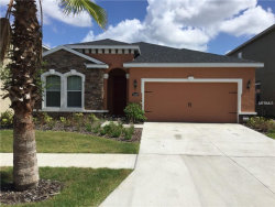 Photo of 11157 Spring Point Circle, RIVERVIEW, FL 33579 (MLS # U8007773)