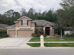 Photo of 551 Lakewood Drive, OLDSMAR, FL 34677 (MLS # U8075493)