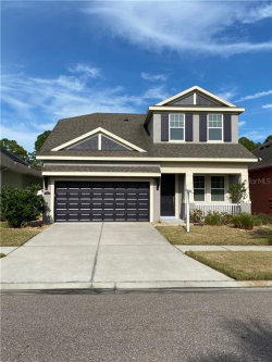 Photo of 11333 Quiet Forest Drive, TAMPA, FL 33635 (MLS # U8080318)
