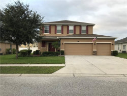 Photo of 13533 Chesapeake Place, SPRING HILL, FL 34609 (MLS # W7818103)