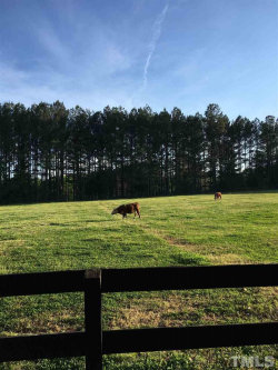 Photo of 633 Fleming Road, Youngsville, NC 27596 (MLS # 2320525)