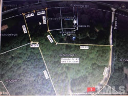 Photo of Lot 9 Brame Road, Oxford, NC 27565 (MLS # 2172403)