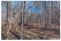 Photo of 4191 Cannady Mill Road, Oxford, NC 27565 (MLS # 2215344)