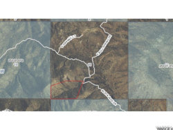 Tiny photo for Lot 166 Blackjack Road, Kingman, AZ 86401 (MLS # 910238)