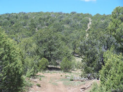 Tiny photo for Lot 003 Meadowview, Seligman, AZ 86337 (MLS # 926749)