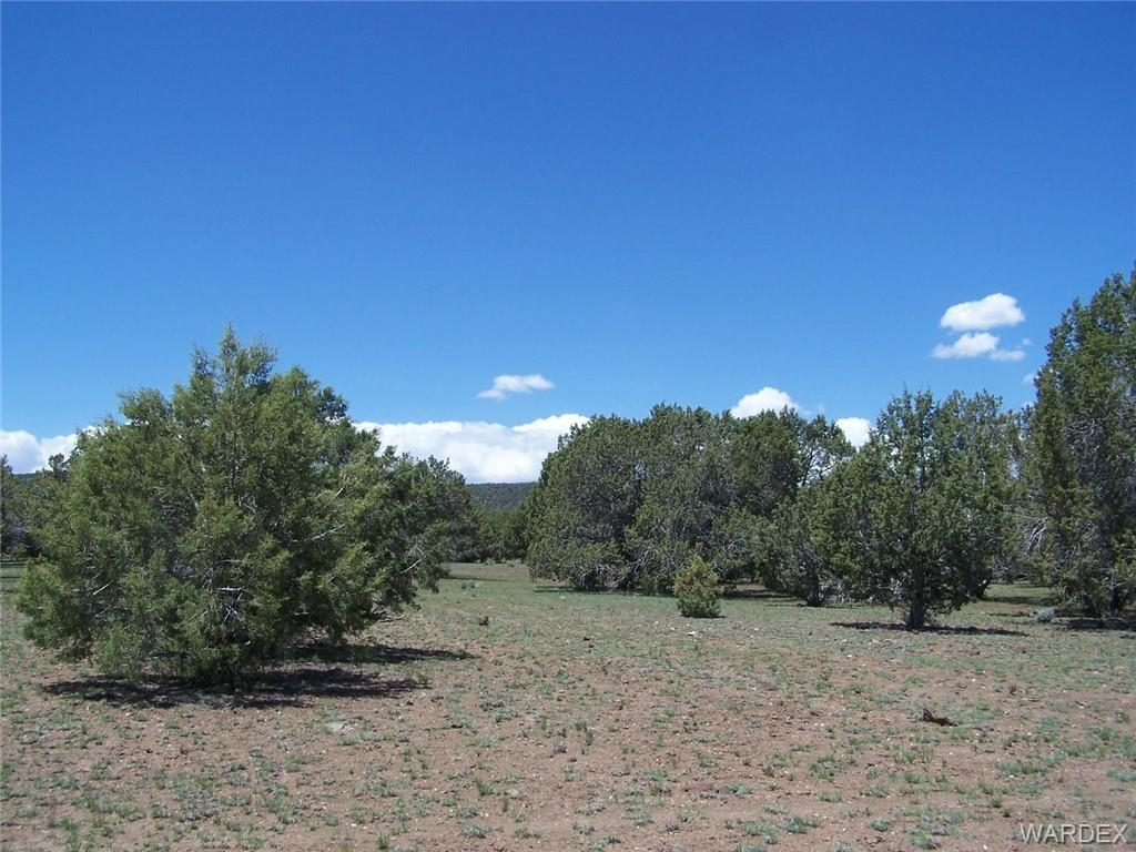 Photo for Lot 004 Meadowview, Seligman, AZ 86337 (MLS # 926750)