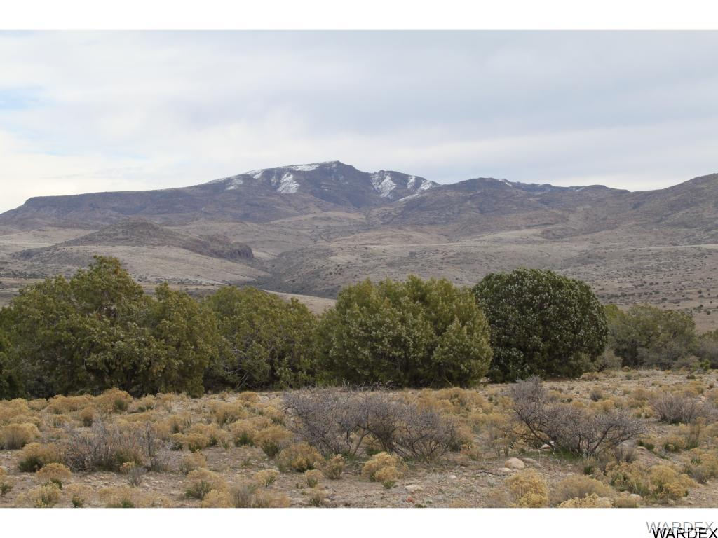 Photo for Lot 231 Bacanora Trail, Wikieup, AZ 85360 (MLS # 929931)