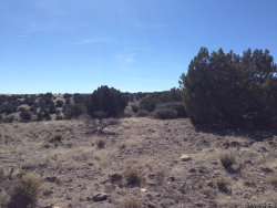 Tiny photo for Lot 231 Bacanora Trail, Wikieup, AZ 85360 (MLS # 929931)
