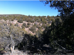 Tiny photo for Lot 159 Granny Court, Kingman, AZ 86401 (MLS # 933930)
