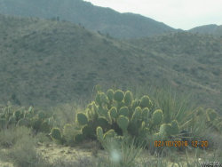Tiny photo for Aquarius Springs Ii 160 Acres, Kingman, AZ 86401 (MLS # 938429)