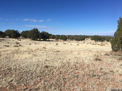 Tiny photo for Lot 301 Peaceful Hill, Seligman, AZ 86337 (MLS # 938432)