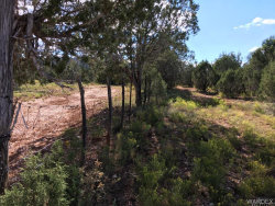 Tiny photo for 320 Acs Cross Mountain Ranch Road, Seligman, AZ 86337 (MLS # 938953)