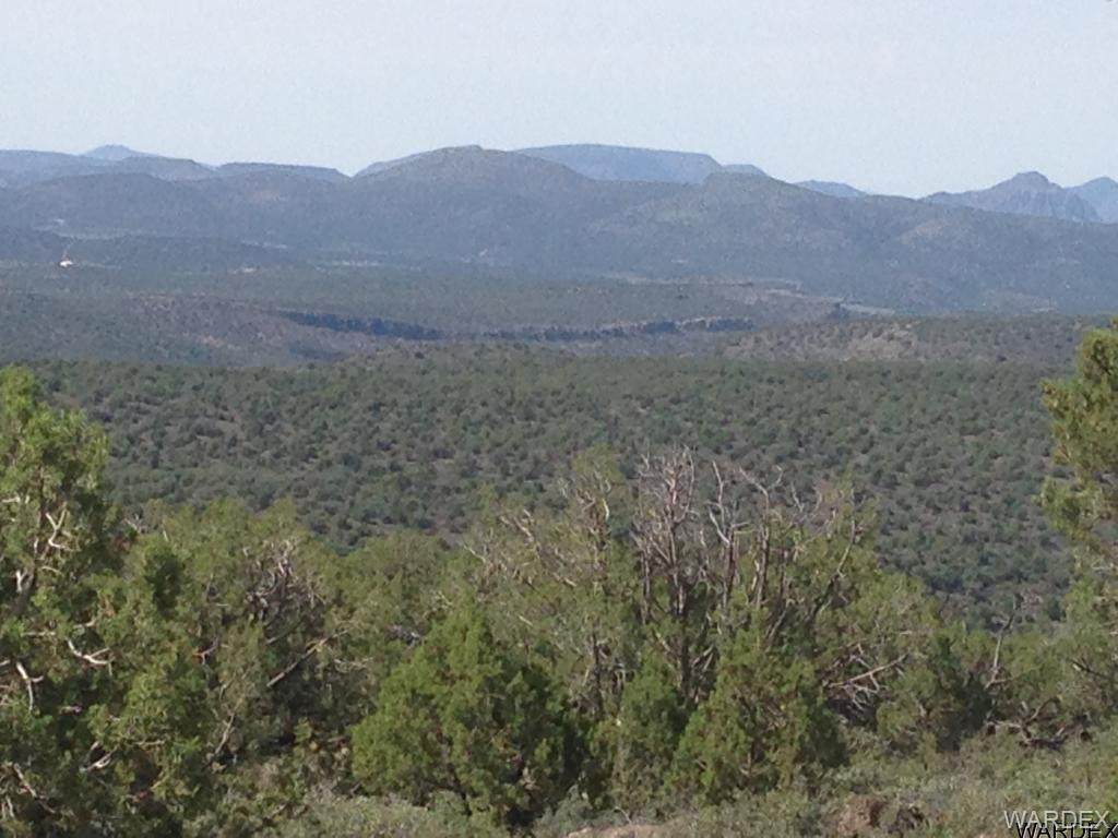 Photo for Lot 119 N Bob White, Kingman, AZ 86401 (MLS # 939109)