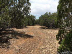 Tiny photo for Kit Fox 2 Lots Trail, Kingman, AZ 86401 (MLS # 950812)