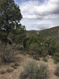 Tiny photo for Lot 144 Eleka Trail, Kingman, AZ 86401 (MLS # 960365)