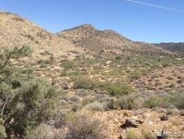 Photo for Lot 129 N Mine Road, Hackberry, AZ 86411 (MLS # 962561)