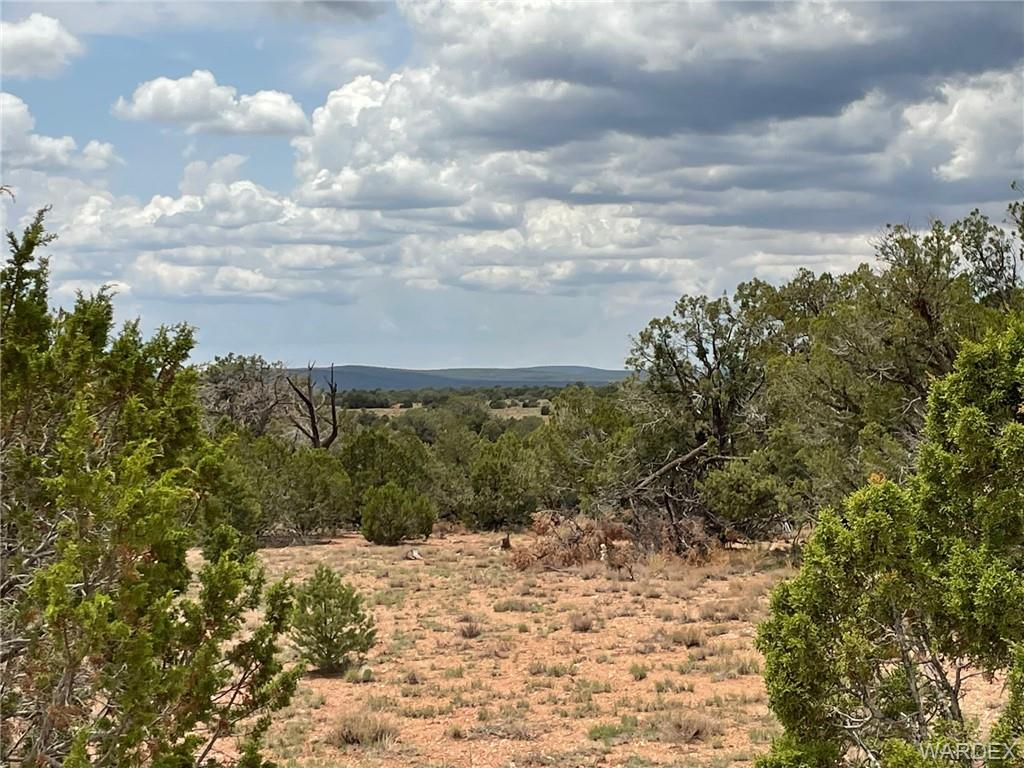 Photo for Lot 150 Antelope Run Road, Peach Springs, AZ 86434 (MLS # 964640)