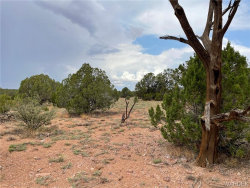 Tiny photo for Lot 150 Antelope Run Road, Peach Springs, AZ 86434 (MLS # 964640)