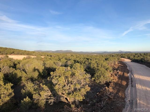 Photo for 9 The Gulch At Fort Rock, Kingman, AZ 86401 (MLS # 966460)