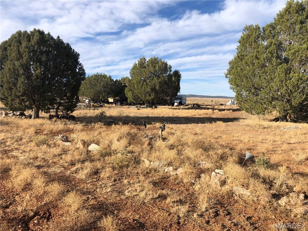 Photo for The Love Shack Ranch, Seligman, AZ 86337 (MLS # 976377)