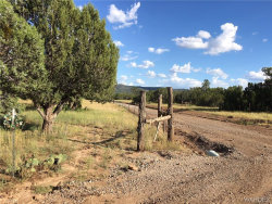 Tiny photo for 42313 Walk About Trail, Seligman, AZ 86337 (MLS # 952454)