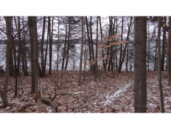 Photo of 8571 Green Lane Shores, Trumansburg, NY 14886 (MLS # 309140)