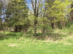 Photo of 0 W MAIN STREET, TRUMANSBURG, NY 14886 (MLS # 309876)