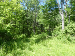 Photo of 0 Elm Street Extension, Ithaca, NY 14850 (MLS # 311080)
