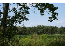 Photo of Lot Ab Trumansburg (Route 96), Trumansburg, NY 14886 (MLS # 311152)