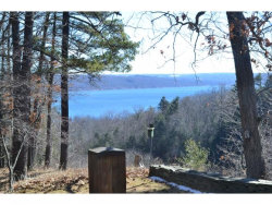 Photo of 0 N FRONTENAC RD, TRUMANSBURG, NY 14886 (MLS # 312964)
