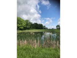Photo of 5501 COLD SPRINGS RD, TRUMANSBURG, NY 14886 (MLS # 313769)