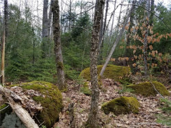 Photo of Lot 11-31 Ring Bolt Lane, Surry, ME 04684 (MLS # 1316468)