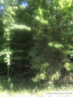 Photo of Lot 6 Rt141/frankfort Rd, Swanville, ME 04915 (MLS # 1353827)