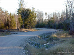 Photo of Lot 5 Woodland Drive, Trenton, ME 04605 (MLS # 1357470)