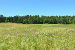 Photo of 930 Sligo-Lot 3 Road, North Yarmouth, ME 04097 (MLS # 1358208)