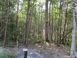 Photo of TBD Bog Brook Road, China, ME 04358 (MLS # 1367727)
