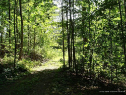 Photo of Lot 102 Fire Road 55, China, ME 04358 (MLS # 1367958)