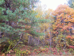 Photo of Lot 31-1 Mitchell Road, Dixmont, ME 04932 (MLS # 1373573)