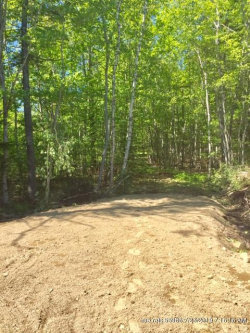 Photo of 1307A Newbury Neck Road, Surry, ME 04684 (MLS # 1407126)