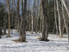 Photo of Lot 2 Kennebec Road, Dixmont, ME 04932 (MLS # 1409595)