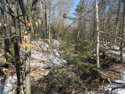 Photo of Lot 5 Kennebec Road, Dixmont, ME 04932 (MLS # 1409597)