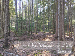 Photo of Lot 5 Old Schoolhouse Lane, Lamoine, ME 04605 (MLS # 1410953)