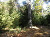 Photo of 0 Lookout Point Road, Bar Harbor, ME 04609 (MLS # 1411370)