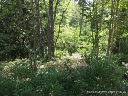 Photo of 0 Neal Lane, Tremont, ME 04612 (MLS # 1412722)