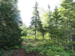 Photo of Lot 2 Bluff Road, Bar Harbor, ME 04609 (MLS # 1413503)