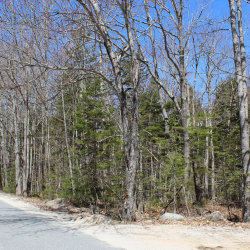 Photo of 00 Old County Road Road, Sedgwick, ME 04676 (MLS # 1414629)