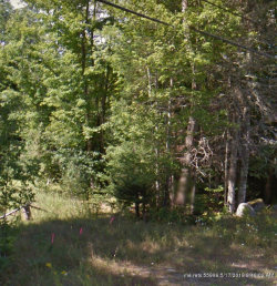 Photo of 00 South Freedom Road, Albion, ME 04910 (MLS # 1414942)