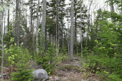 Photo of 00 Wendall Woods Lane, Blue Hill, ME 04614 (MLS # 1416685)